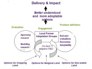 Delivery and Impact