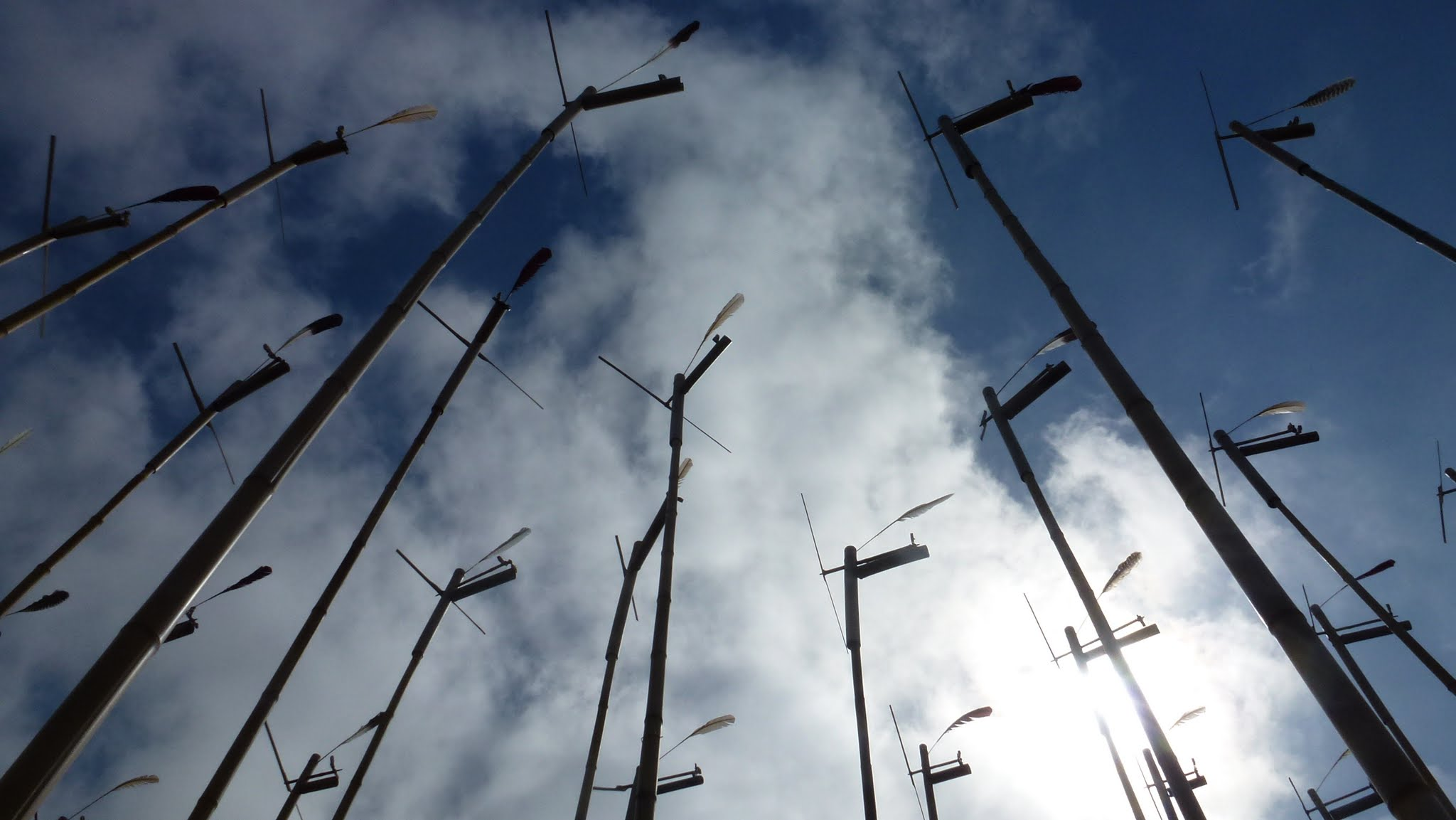 Looking upwards at multiple small windmills mounted on bamboo poles