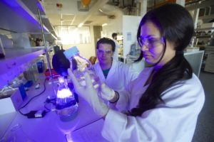 Male and female researchers working in laboratory.